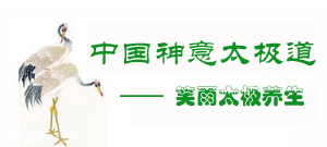 中国神意太极拳网